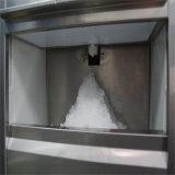 Gran capacidad de 100kg flake ice maker para Starbucks
