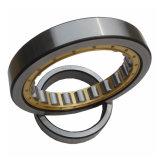 Cuscinetti a rullo cilindrici di riga del doppio di alta esattezza per la macchina della pressa della scatola ingranaggi (NJ2316)
