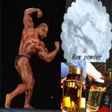 Gesundes Bodybuilding ergänzt Steroid-Puder-Testosteron Undecanoate