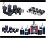 25W 80mm DC Gear Motor