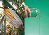 De35-65 glicose, glicose do xarope, glicose do Maltose, glicose do milho, glicose líquida, glicose de Luzhou, 170230.