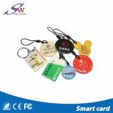 주문 모양 Hf 13.56MHz 에폭시 RFID Contactless Keychain