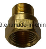 American Brass Flare Comp Conector Fêmea