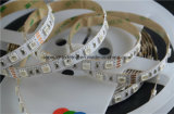 Super luminosité LED SMD 5050 Strip Light avec double circuit