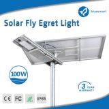 Lámpara solar innovadora del jardín LED de la calle 2017 100W