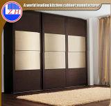 현대 디자인 미닫이 문 옷장 (ZHUV)
