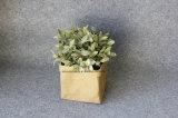 Waschbarer Packpapier-Speicher-Beutel-Spielzeug-Pflanzenpotentiometer für Weihnachtsdekoration