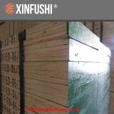 Carte étanche Pine LVL planche de bois pour la construction d'Échafaudage