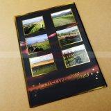 De Druk van de Catalogus van de luxe met het Stempelen van de Folie Vlek UV