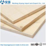 Chapa de madera de álamo de alta calidad para muebles de madera contrachapada frente