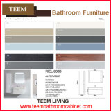비친 Cabinets Type 및 Modern Style Bathroom Vanity