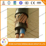 2*8 Leiter AWG-Lehre2*10awg kupfernes XLPE Isolier-Belüftung-Hüllen-Service-Kabel-konzentrisches Kabel