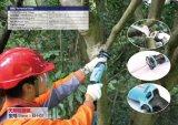 Koham оборудует цепную пилу вырезывания ветвей дуба электрическую