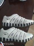 Ботинки спорта женщин, вскользь Shoes-18000pairs