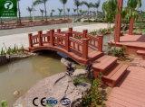 Pêche à la traîne Anti-UV imperméable à l'eau composée en plastique en bois de la longue vie WPC/clôture