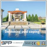 Отточен гранита Бассейн Cooping/фонтан/бассейн вокруг для наружной
