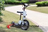 500W Brushless Autoped van de Fiets van de Batterij van het Lood van de Motor 48V Zure Elektrische