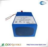 Agv-Batterie-Satz 24V 10ah