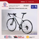 2018 Nouveau style gras Wholsale 700C Pneu Road Bike Châssis en alliage aluminium bon marché de vélo de route