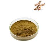 100% reine natürliche chinesische PflanzenkräuterPolygonatum Sibiricum AuszugPolygonatum Sibiricum Puder