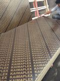 Madera contrachapada caliente de la construcción de la alta calidad de China de las ventas para el uso al aire libre