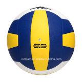 Cer bestätigte haltbaren personifizierten Volleyball