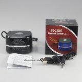FM 라디오, 보조 선 Ine, USB 슬롯 및 관례 로고 서비스를 가진 Bluetooth 휴대용 소형 스피커