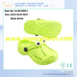 Entraves unisexes Holey durables de jardin de mode de chaussures d'entrave d'EVA