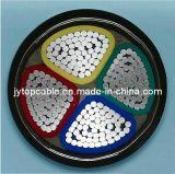 Fil d'acier simple coeur de 16mm Câble blindé 3 coeurs et 4 Core (SWA et STA câble)