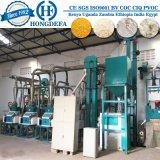 Modèle pour des clients du Kenya des machines de fraisage du maïs 10t/24h
