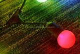 Indicatore luminoso della cinghia di natale E27 del cavo del LED 10m