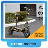 Het gemotoriseerde Overzicht van de Scooter voor Volwassenen/de Groene Elektrische Motor van de Autoped