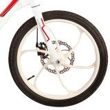 بشكل جميل يصمّم سيادة [إ-بيك] مع عجلة صغيرة لأنّ عمليّة بيع