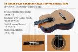 Guitarra principal de Smallman del grado con gran diseño