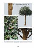 SGS 증명서를 가진 옥외 훈장을%s 50512 올리브 인공적인 나무