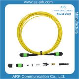 MPO/APC a la MPO/APC latiguillo de fibra óptica