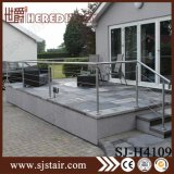 Balustre à balustrade en rampes à escalier en porc en acier inoxydable (SJ-H4109)
