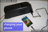 36V 11ah per il ciclo della batteria delle cellule di Samsung con il caricatore