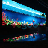 Visualizzazione di LED dell'interno perfetta di colore completo di effetto 6mm di visione