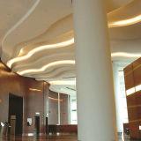 Brillo 55-56lm W/Ww 50m/Roll/ETL/Ce/RoHS de la tira de 5630 LED alto aprobado/decoración del edificio