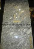 Azulejo lleno del mármol de la carrocería del diseño caliente del material de construcción