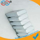 De Magneet van het blok met Pakking