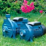 La pompa ad acqua del giardino del Ce ha impostato (CPM)