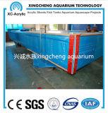 20mm tot 650mm het Dikke Transparante AcrylProject van het Aquarium van het Blad