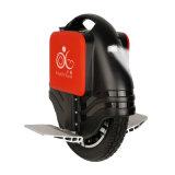 세륨과 RoHS 형식 균형 스쿠터 소형 1개의 바퀴 스쿠터 2 바퀴 전기 스쿠터