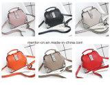 Signora poco costosa variopinta Handbag dell'unità di elaborazione di nuovo modo di arrivo