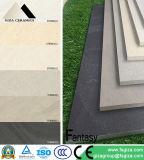 Mattonelle di pavimento antisdrucciolevoli del ristorante di rivestimento opaco con l'ente completo (STB0605)
