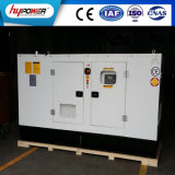 Weifang 62kVA 방음 조용한 대기 발전기 세트