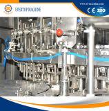 Machine de remplissage carbonatée par bouteille de boissons d'animal familier