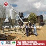 Treillis métallique galvanisé à chaud de la norme Q235 internationale pour la ferme de l'Algérie